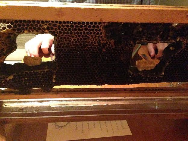 crenn beehive